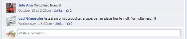 Castigatori concurs facebook